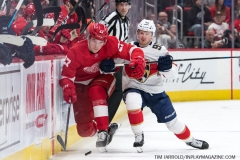 Red Wings vs Panthers Dec 22 2018 (1)