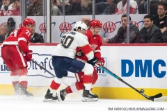 Red Wings vs Panthers Dec 22 2018 (11)