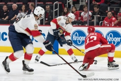 Red Wings vs Panthers Dec 22 2018 (16)