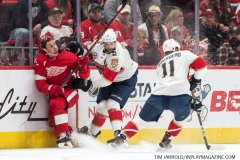 Red Wings vs Panthers Dec 22 2018 (17)