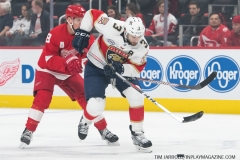 Red Wings vs Panthers Dec 22 2018 (2)