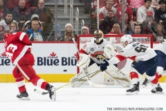 Red Wings vs Panthers Dec 22 2018 (20)