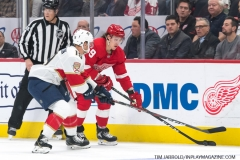 Red Wings vs Panthers Dec 22 2018 (4)