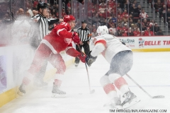 Red Wings vs Panthers Dec 22 2018 (5)