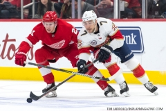 Red Wings vs Panthers Dec 22 2018 (6)