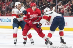 Red Wings vs Panthers Dec 22 2018 (8)