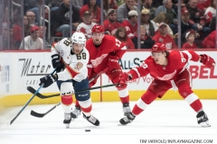 Red Wings vs Panthers Dec 22 2018 (9)