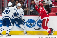 Red WIngs vs Leafs Dec 15 2017 (3)