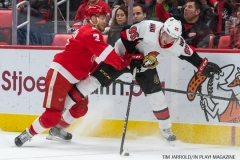 Red Wings vs Ottawa Jan 3 2018 (9)
