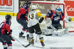 Windsor Spitfires vs Sarnia Sting Feb 2 2018 (10)