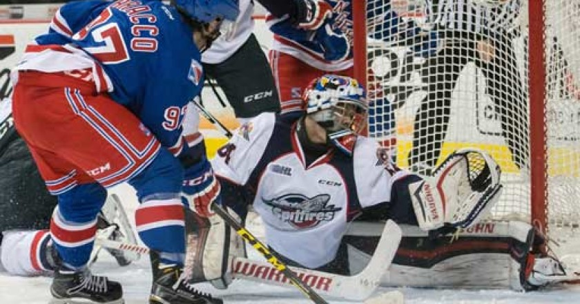 Michael-DiPietro goaltender, Michael DiPietro Ontario Hockey League Goalie of the Year