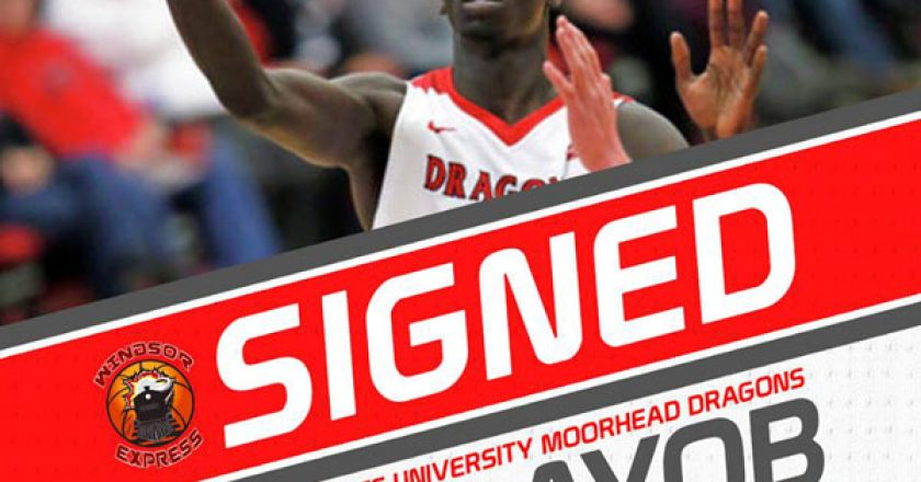 Windsor Express Sign 6' 7'' Ayob Ayob