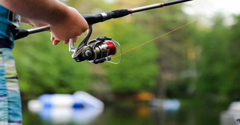 Province to Offer Free Fishing to Veterans and Active Armed Forces Members, Wildlife Licensing