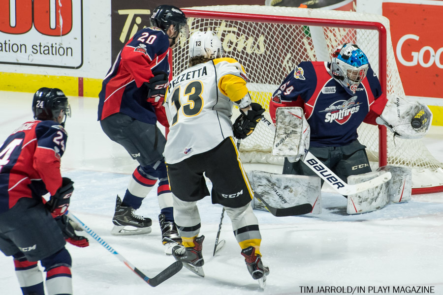 Windsor Spitfires vs Sarnia Sting Feb 1 Gallery